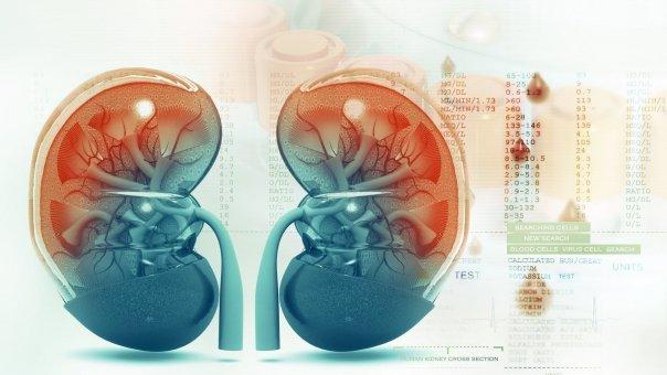 Ceaiuri care ajuta la eliminarea pietrelor de la rinichi